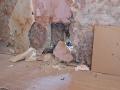 Mauerschaden im Treppenhaus